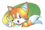Sonic 2 warning 1