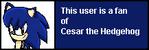 Userbox- CesarFan