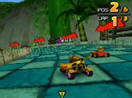 Treetops DS 06