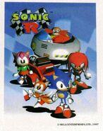 Sonic R sticker