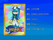 Sonic X karta 120