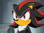 ShadowTheBeautyHedgehog