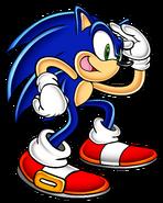 Sonic SA art 11