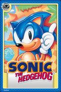 Sonic 1 Card