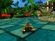 Treetops DS 09