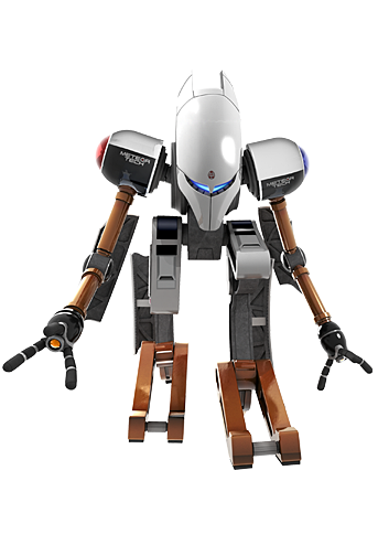 Robot pose 2
