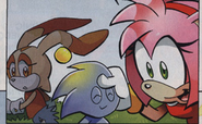 Amy and the Chao