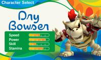 Mario Sonic Rio 3DS Stats 39
