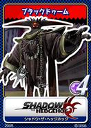 Shadow the Hedgehog karta 18