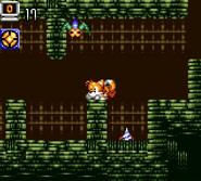 Cavern Island 25