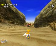 Sand Hill DX 39