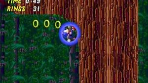 Sonic the Hedgehog 2 Scrapped Zones Wood Zone