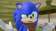 Sonic stumped