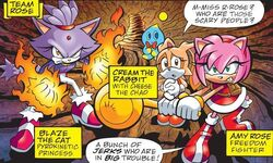 Team-Rose-archie-sonic-the-hedgehog-18293829-649-390