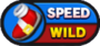 Sonic Runners Speed Wild