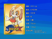 Sonic X karta 91