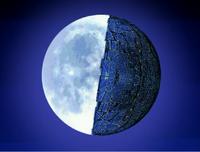 Egg Moon Profile