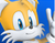 Sonic Jump Tails Icon