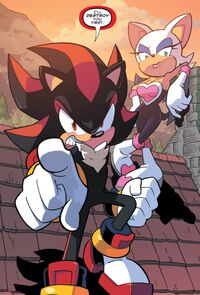 Shadow and Rouge IDW