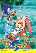 Sonic X DVD JP Vol 6