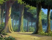 Didysis Miškas SatAM