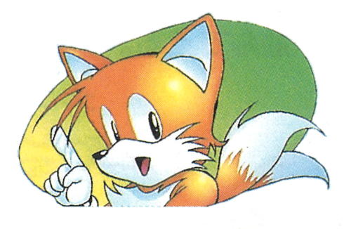 File:Sonic-2-Warning-I.png