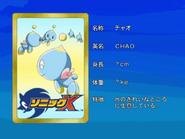 Sonic X karta 44