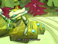 Nrrgal Warrior