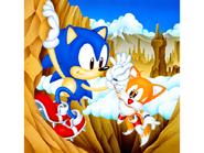 Sonic Screen Saver 25