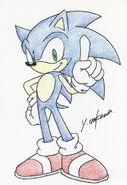 Sonic Inne 43