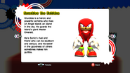 Knuckles profile SG