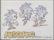 HedgehogSEGA