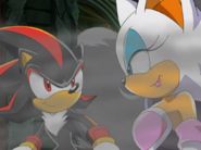Shadow and RougeX