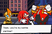 Knuckles and his partner