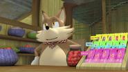 Fennec Shopkeeper candy