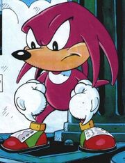 Knuckles (Sonic the Summer Special)