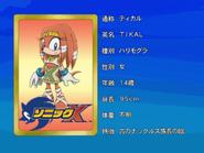 Sonic X karta 62