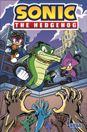 Sonic IDW 17 Cover A