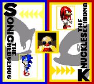 Sonic Blast Character Select