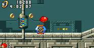 Egg Rocket 43