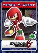 Shadow the Hedgehog karta 14