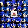 20th Sonic Anniversary 2011.jpg