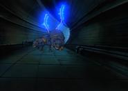 Warp Sonic 112