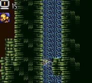 Cavern Island 33