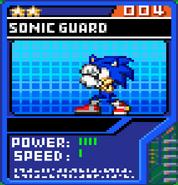 Sonic Guard