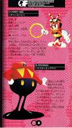 Chaotix manual japones (8)