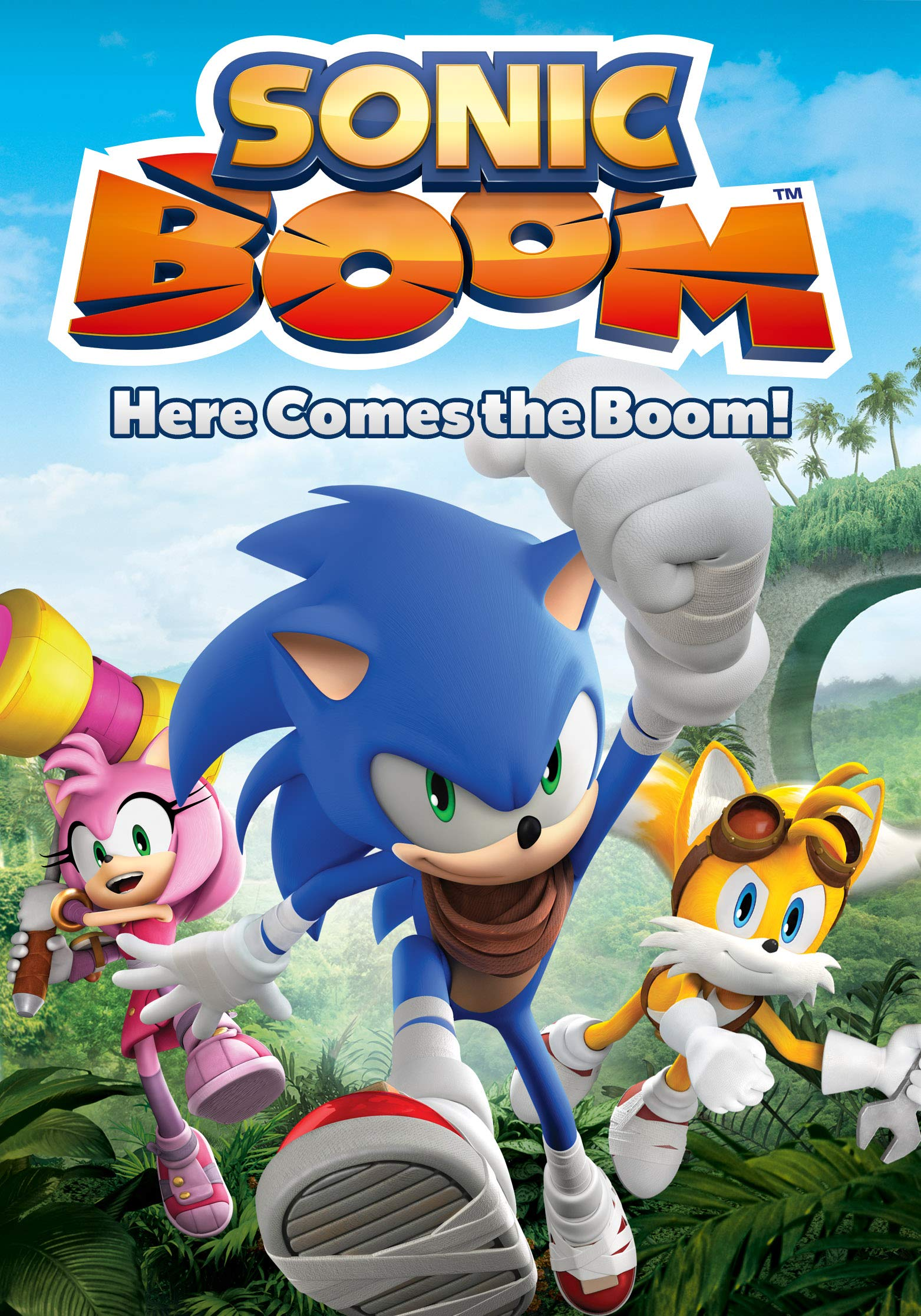 Sonic Boom: Here Comes the Boom! | Sonic News Network ...