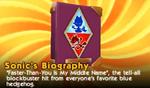 SonicBiographyToy