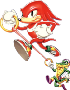 Knux nd vector