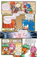 Sonic the Hedgehog 263-012